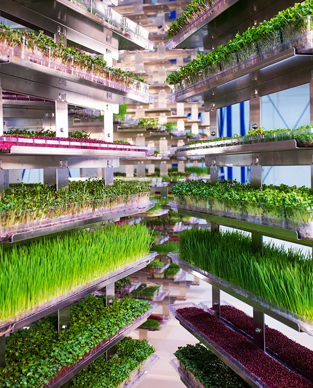 urban hydro farming sustainable solutions to depleting The future of the earth  sustainable urban systems  urban farming, greenhouse farm) stormwater management with low-impact development.